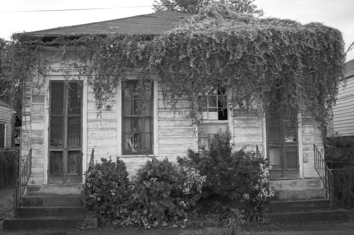 Lush Growth, House, Bywater